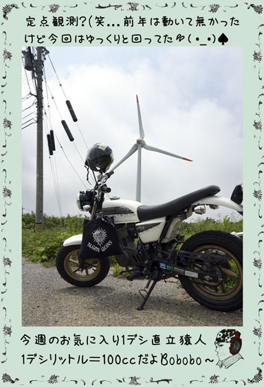 ape100cc63c.jpg