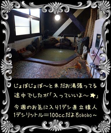 ape20151021c.jpg